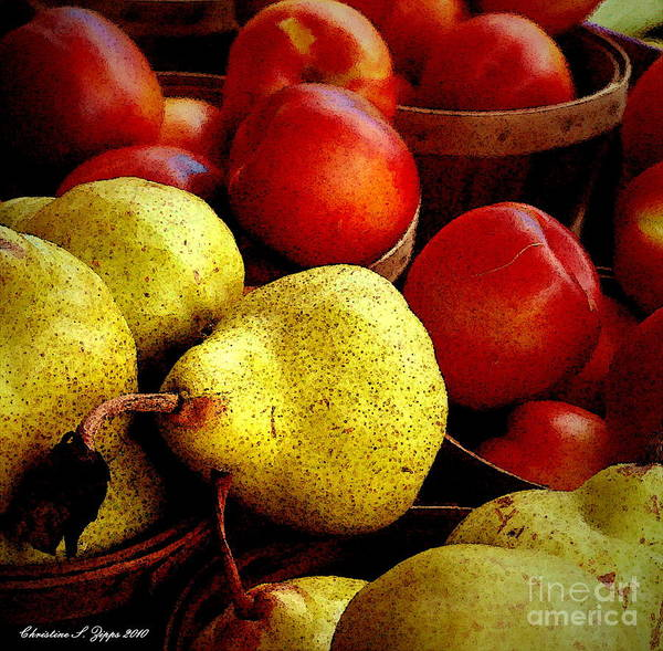 Pears Poster featuring the photograph Juicy by Christine S Zipps