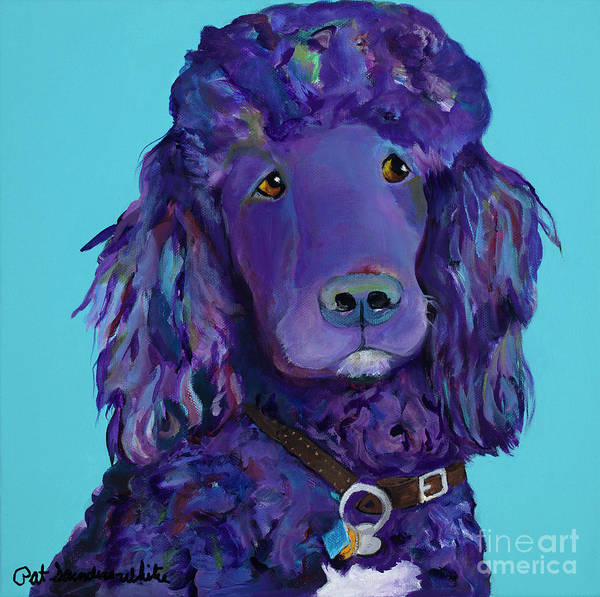 Standard Poodle Poster featuring the painting Leo by Pat Saunders-White