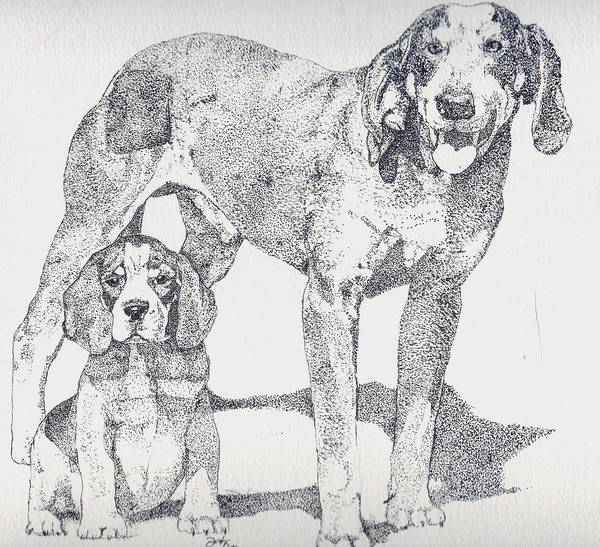 Bluetick Coonhound Poster featuring the drawing Like Father Like Son by Debra Sandstrom