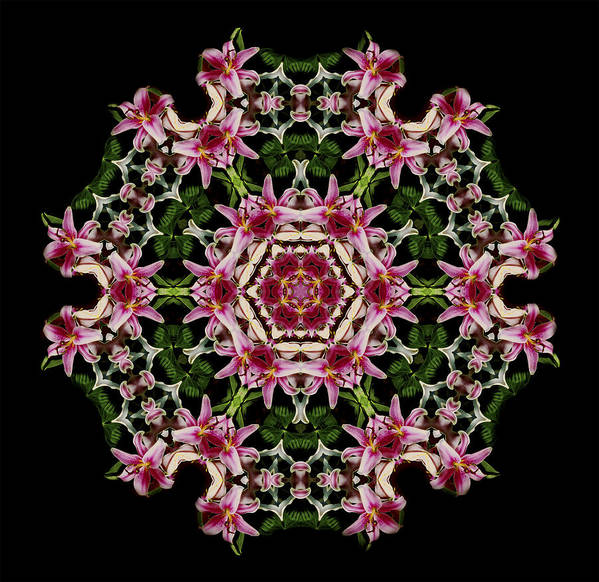 Mandala Poster featuring the photograph Mandala Monadala Lisa by Nancy Griswold