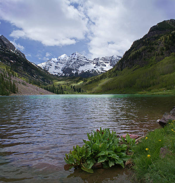 Aspen Poster featuring the photograph Maroon Bells Spring by Heather Coen