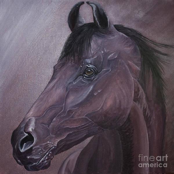 Horse Marwari Equine Purple Poster featuring the painting Marwari purple by Pauline Sharp