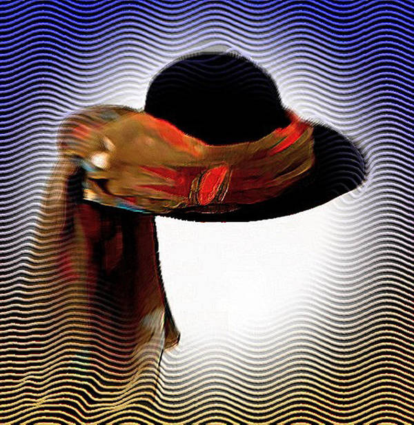 Hat Poster featuring the photograph My Favorit Hat by Carola Ann-Margret Forsberg