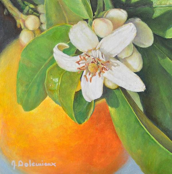 Acrylic Painting Poster featuring the painting Nouvelle Orange by Muriel Dolemieux