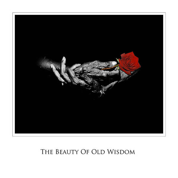 Photography Poster featuring the photograph Old Wisdom by Richard Gordon