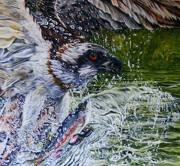 Osprey Poster featuring the painting Osprey by Donald Dean
