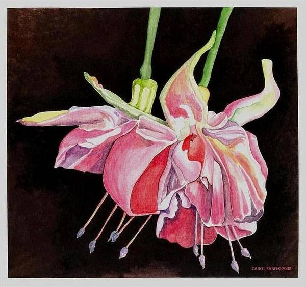 Art Poster featuring the painting Pink Fuscia by Carol Sabo