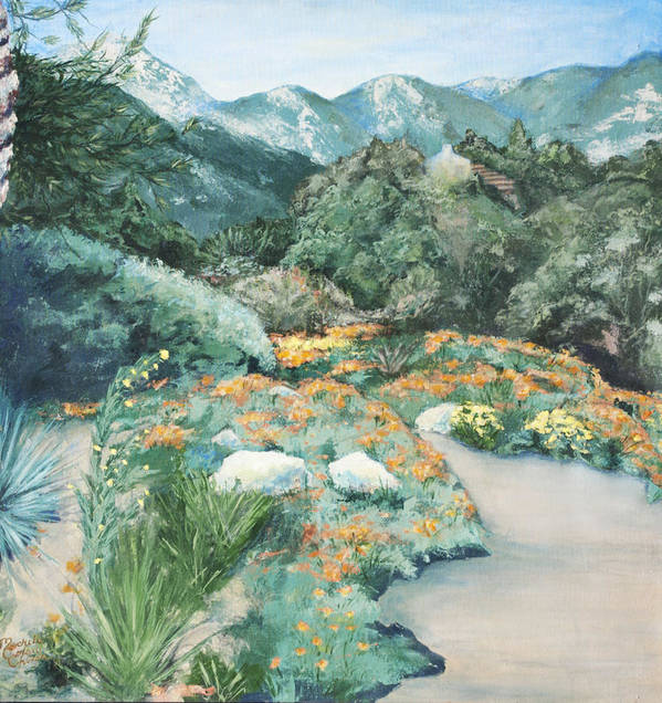 Santa Barbara Botanical Gardens Poster featuring the painting Poppies by M Schaefer