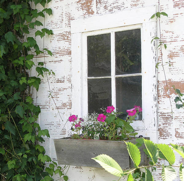 Potting Shed Poster featuring the photograph Potting Shed Window by Janis Beauchamp