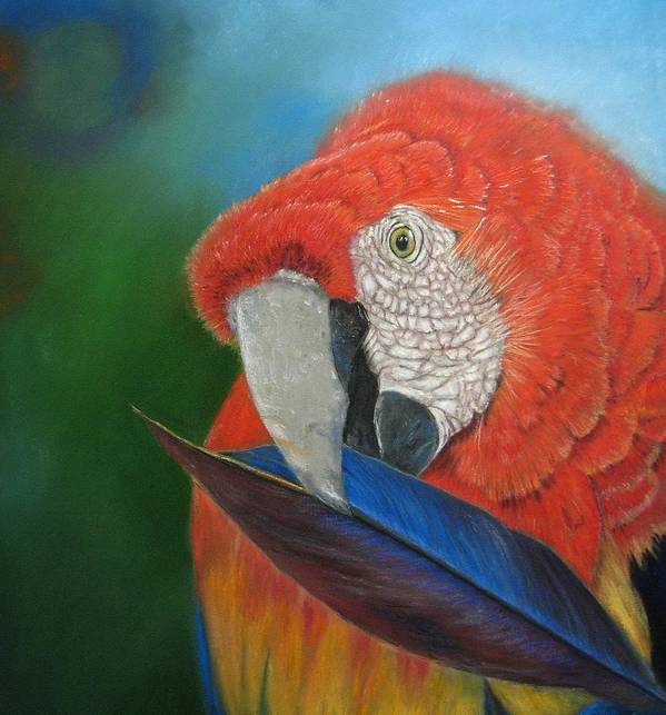 Bird Poster featuring the painting Presumida by Ceci Watson