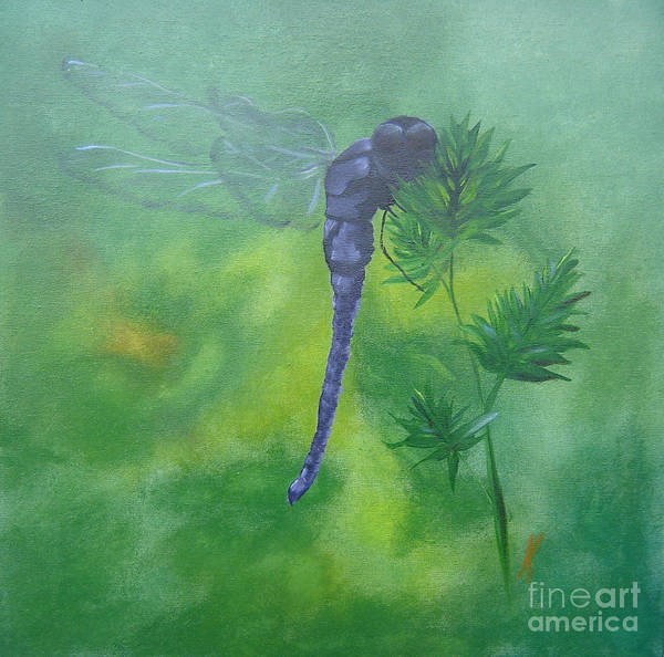 Dragon Fly Poster featuring the painting Purple Dragon by Kalib Anglin