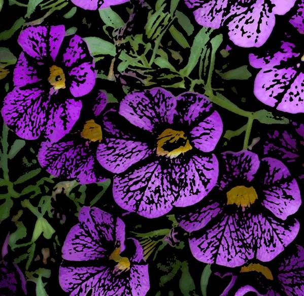 Digital Photograph Poster featuring the photograph Purple Floral Fantasy by David Lane