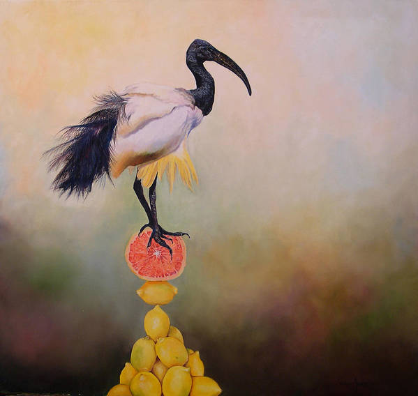 Bird Poster featuring the painting Sacred Ibis Lemon Pyramid by Valerie Aune