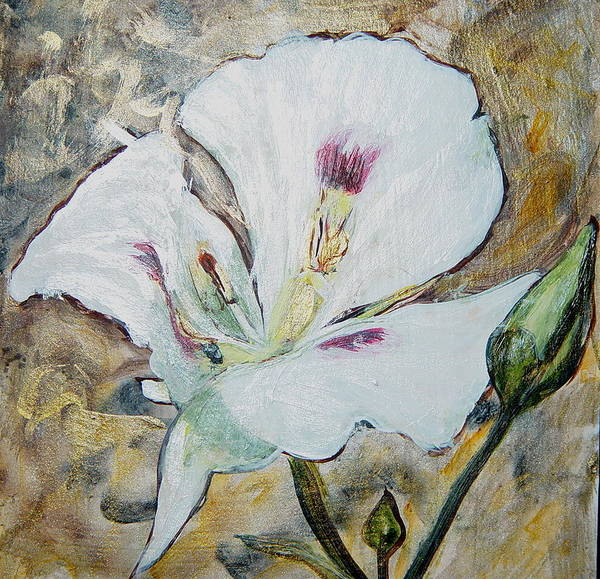 Sego Lily Poster featuring the painting Sego Lily by Bonnie Peacher