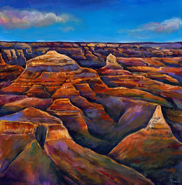 Landscapes Poster featuring the painting Shadow Canyon by Johnathan Harris