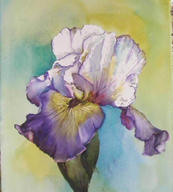 Iris Poster featuring the painting single Iris by Diane Ziemski