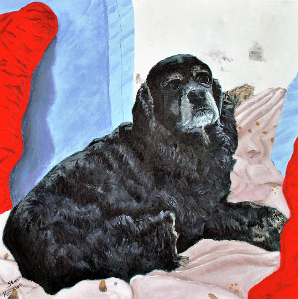 Pet Portrait Poster featuring the painting Smudge by Stan Hamilton