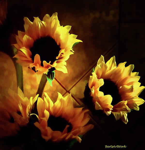 Flowers Poster featuring the photograph Sunflowers In Shadow by Roberta Byram