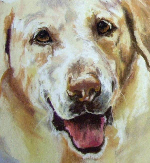 Labrador Poster featuring the painting Yellow Lab by Debbie Anderson