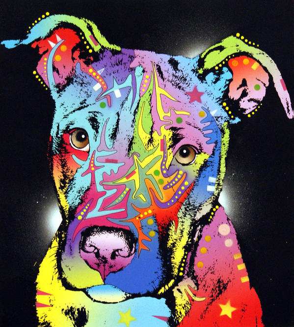 Dog Poster featuring the painting Young Bull Pitbull by Dean Russo