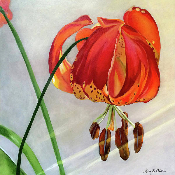 Painting Poster featuring the painting Moment in the Sun - Lily by Mary Chant