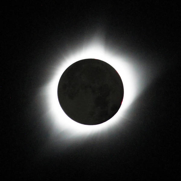 Solar Eclipse Poster featuring the photograph The great American Eclipse by Nunzio Mannino
