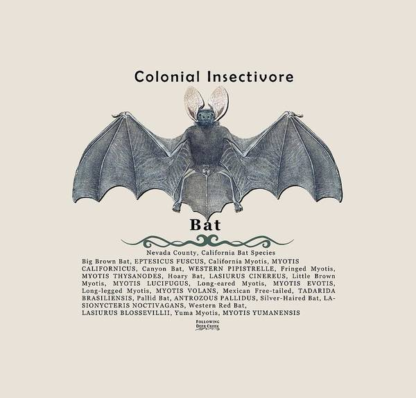 Bat Poster featuring the digital art Bats Of Nevada County by Lisa Redfern