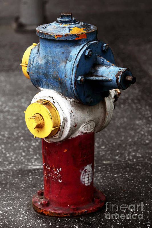 Hollywood Hydrant Poster featuring the photograph Hollywood Hydrant by John Rizzuto