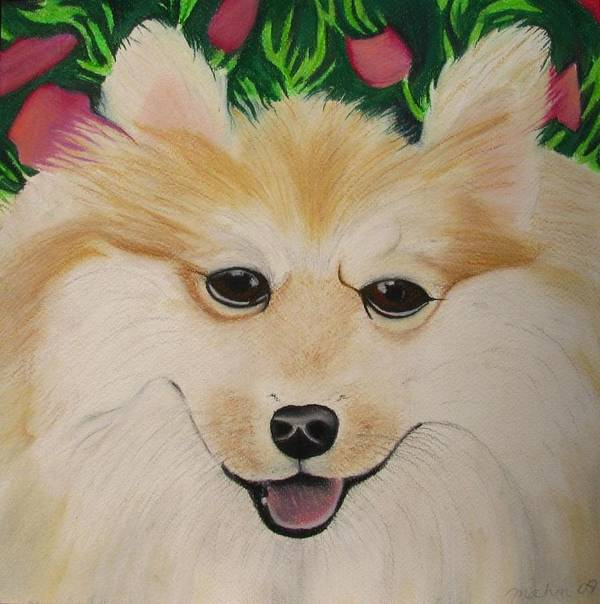 Dog Portrait Poster featuring the painting Daisy by Michelle Hayden-Marsan