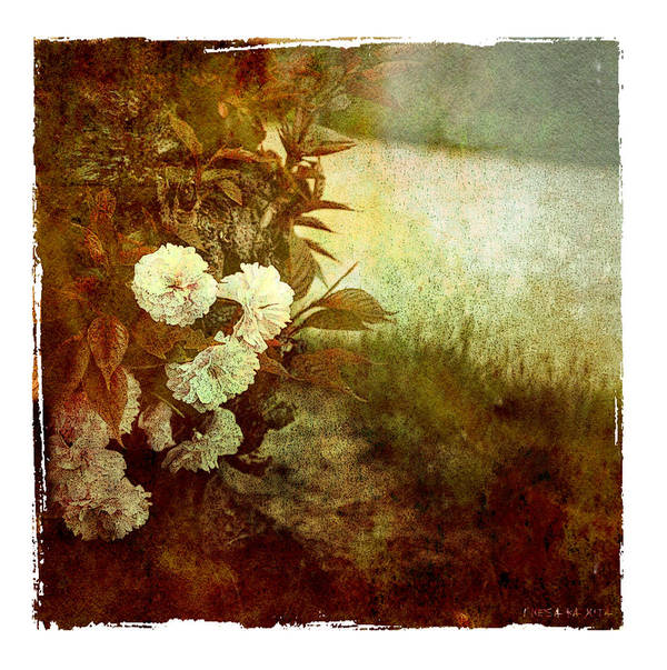 Flowers Poster featuring the photograph I Still Love You by Inesa Kayuta