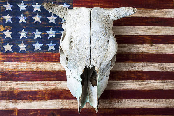 Cow Skull Poster featuring the photograph Cow Skull On Folk Art American Flag by Garry Gay