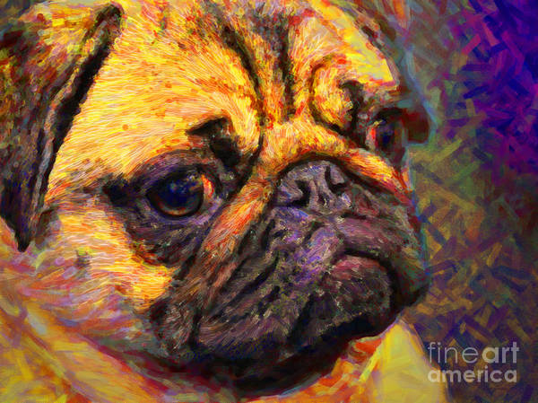 Animal Poster featuring the photograph Pug 20130126v1 by Wingsdomain Art and Photography