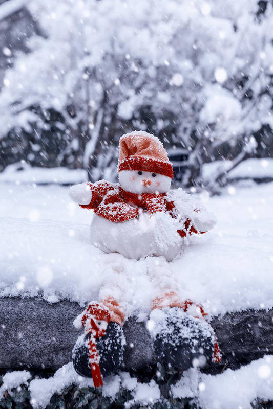 Snowman Poster featuring the photograph Snowman by Joana Kruse
