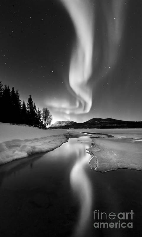 Aurora Borealis Poster featuring the photograph Aurora Borealis Over Sandvannet Lake by Arild Heitmann