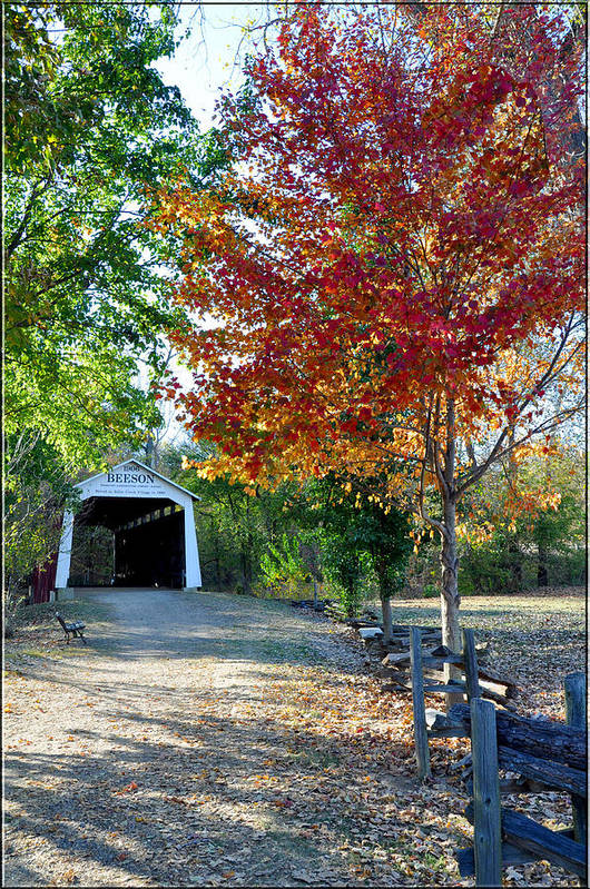 Autumn Poster featuring the photograph Billie Creek by Brittany H