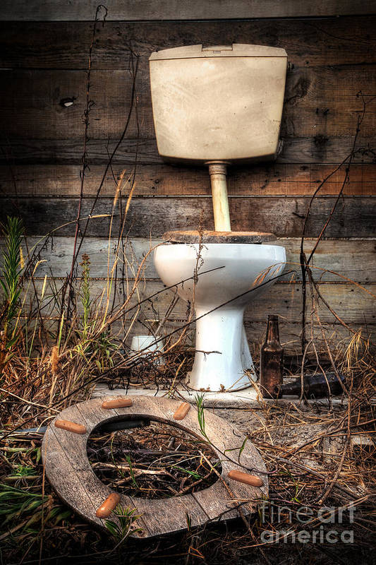 Abandoned Poster featuring the photograph Broken Toilet by Carlos Caetano