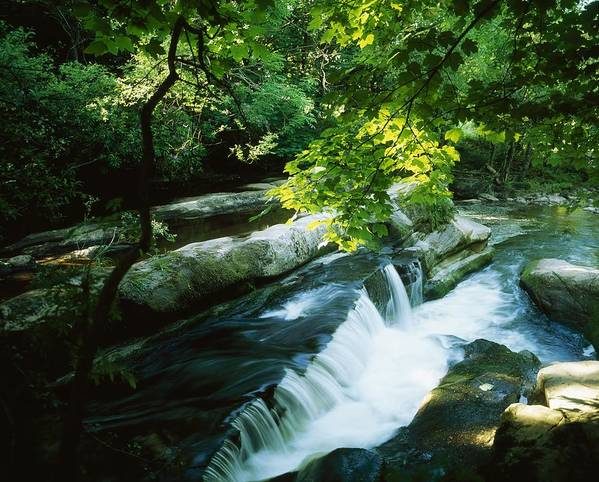 Motion Blur Poster featuring the photograph Clare Glens, Co Clare, Ireland by The Irish Image Collection