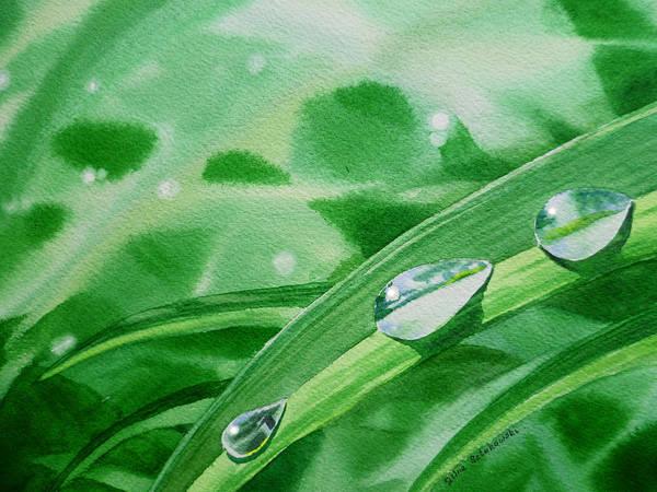 Dew Drop Poster featuring the painting Dew Drops by Irina Sztukowski