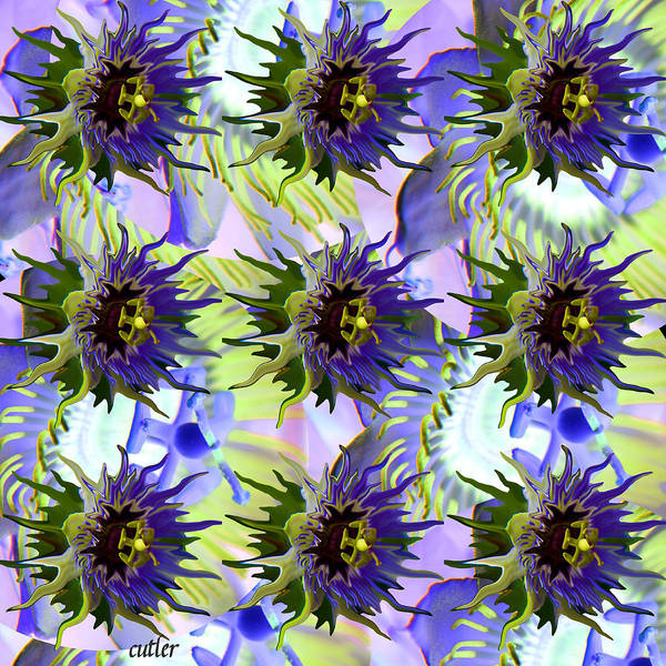 Flower Poster featuring the digital art Flowers On The Wall by Betsy C Knapp