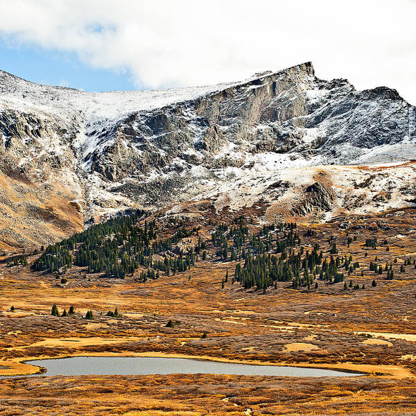 Mountains Poster featuring the photograph Guanella Pass Colorado by Beth Riser