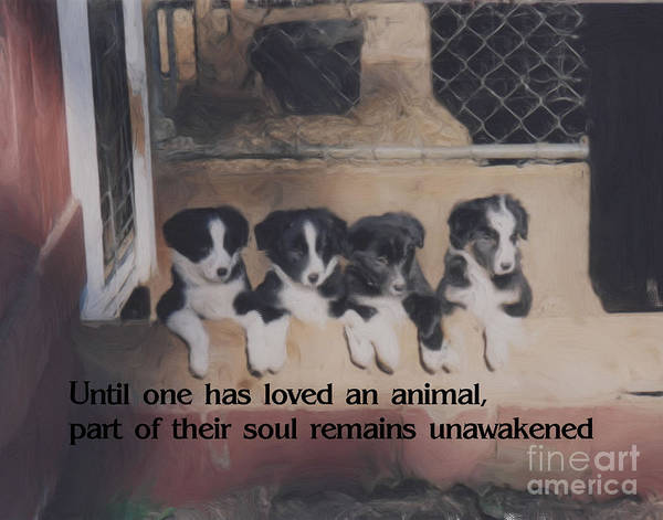Inspirational Poster featuring the painting Love For Animals by Smilin Eyes Treasures