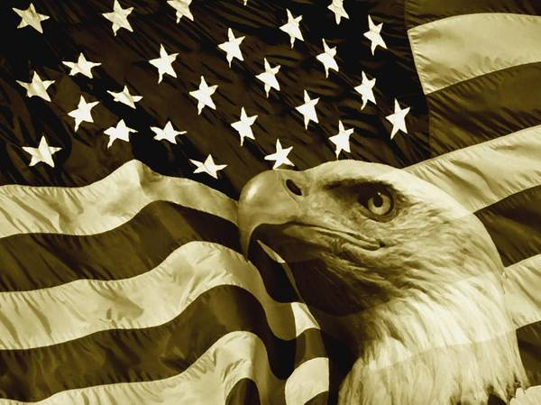 Eagle Digital Art Poster featuring the digital art One Nation by Stefan Kuhn