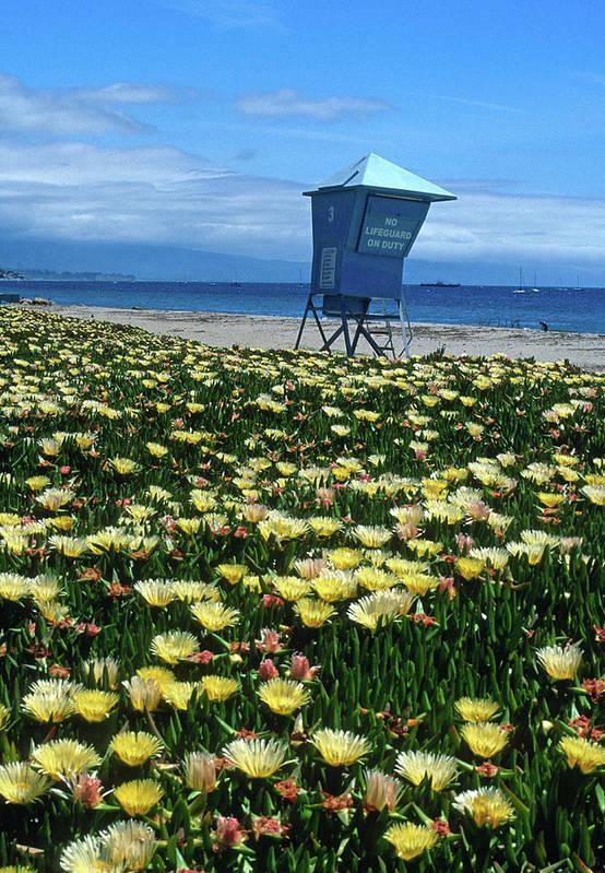 Beach Poster featuring the photograph Spring Break Santa Barbara by Kathy Yates