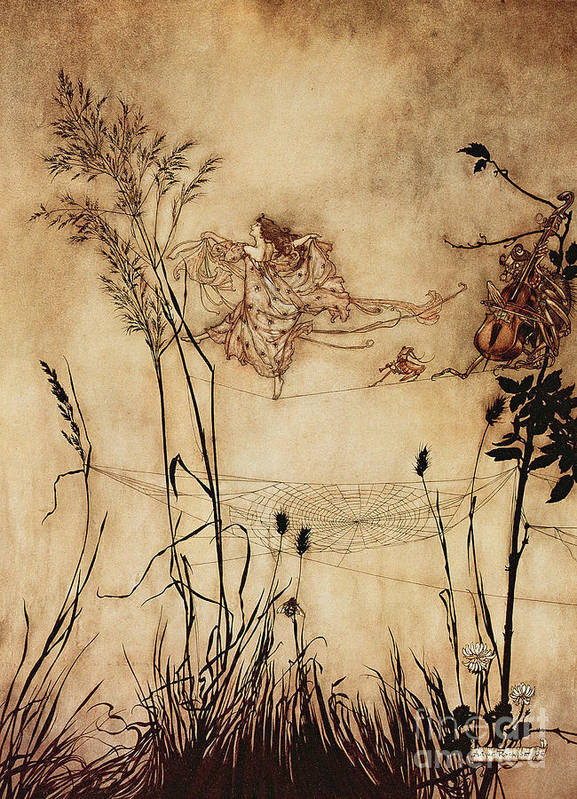 Woman Poster featuring the drawing The Fairy's Tightrope From Peter Pan In Kensington Gardens by Arthur Rackham