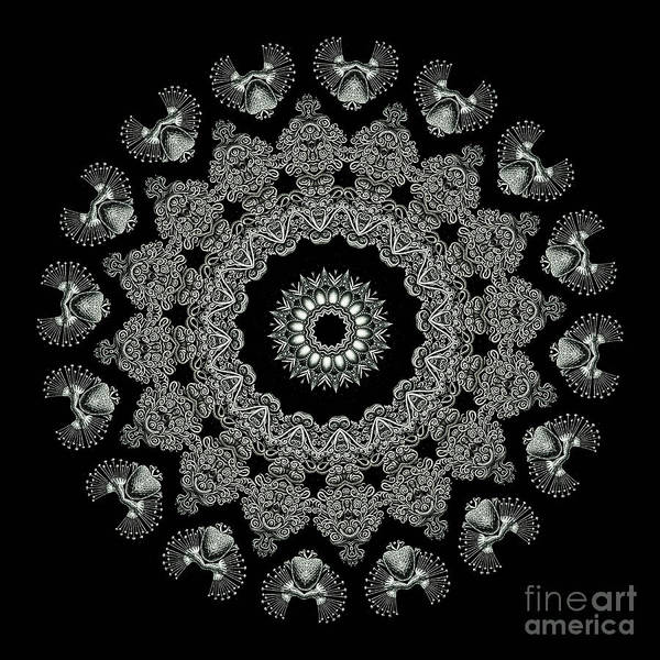 Ernst Haeckel Print featuring the photograph Kaleidoscope Ernst Haeckl Sea Life Series Black And White Set 2 by Amy Cicconi