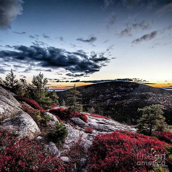Beech Mountain by Susan Garver