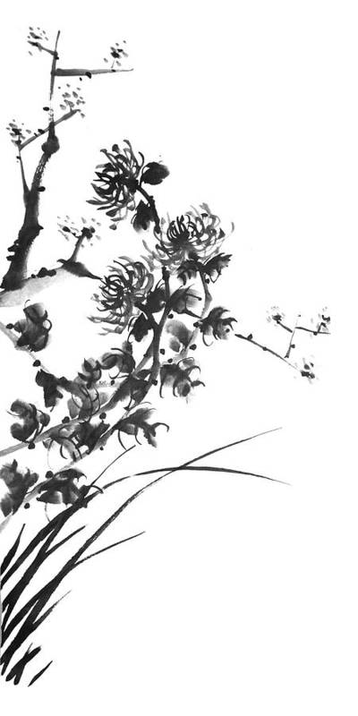 Japanese Art Print featuring the painting Chrysanthemum2 by Chang Lee