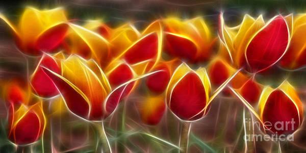 Cluisiana Tulips Art Print featuring the digital art Cluisiana Tulips Fractal by Peter Piatt