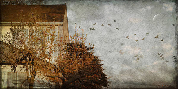 Birds Art Print featuring the photograph Evening by Inesa Kayuta