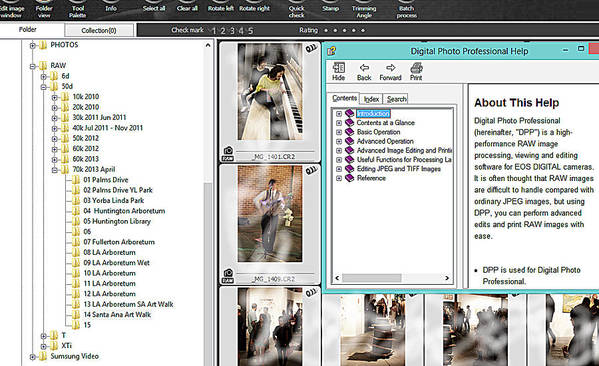 Raw Art Print featuring the photograph How To Organize Your Files by Viktor Savchenko